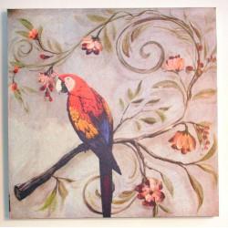 Obraz Papoušek Ara arakanga