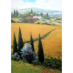 Obraz na plátně Slunečnicové pole