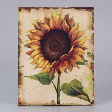 Obraz na plátně Slunečnice 45 cm