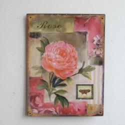 Plechová cedule Růže